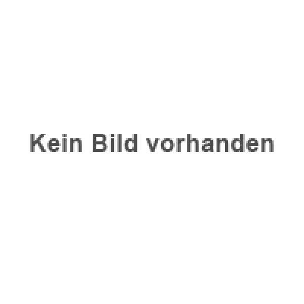 Gartenmoebel | Stuhl Säntis Kufen CH | Hobi Wohnschreinerei AG